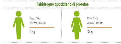 Fabbisogno quotidiano di proteine: uomo, peso 75kg, altezza 180cm, fabbisogno proteine 62g; donna, peso 65kg, altezza 165cm, fabbisogno proteine 54g